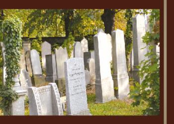 """Promocja książki """"Cmentarz  żydowski w Dzierżoniowie"""""""